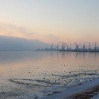 Порт зимой,Бердянск :: Рина Воржева