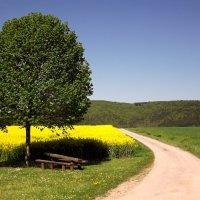 Весна в Баварии :: Эдвард Фогель
