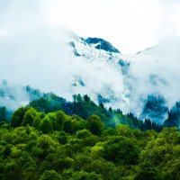 Туман спускается с гор :: Елена