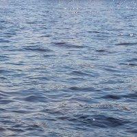 Лучики невской волны.... :: Tatiana Markova