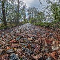 Старая дорога :: Владимир Самсонов