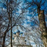 весна в городе :: Олеся Семенова