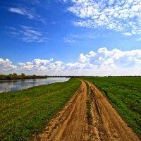 вдоль реки :: Вадим Виловатый