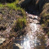 Начало водопада. Автор Саша :: Фотогруппа Весна.
