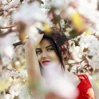 Весной все цветет и Елена особенно прекрасна :: Алеся Корнеевец