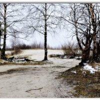 Поздняя весна :: Василий Хорошев