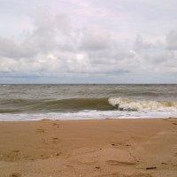 Азовское море :: Рина Воржева