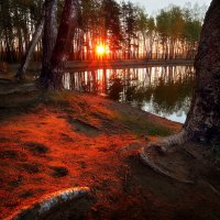 Рассветы мая....2. :: Андрей Войцехов
