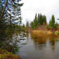 Иркутская область, река Топорок :: Анна Васина