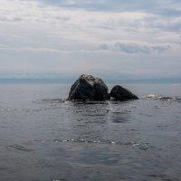 Шаман Камень :: Константин Шабалин