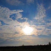 Небо :: Екатерина Сокова