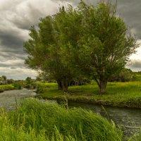 пейзаж :: Дмитрий Потапкин