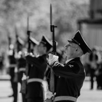 soldiers on the line :: Dmitry Ozersky