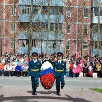 Цветы для победителей :: Ольга