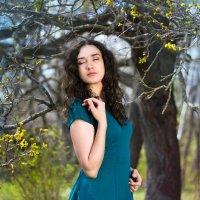 Весна :: Наталья Шелыганова