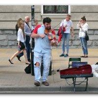 Уличный музыкант. :: Чария Зоя