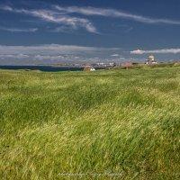 Севастопольские просторы :: Sergey Bagach