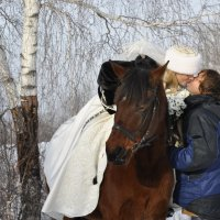 Прогулка на лошадях в день свадьбы :: Ольга Слободянюк