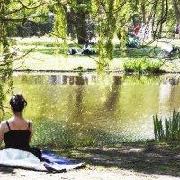 отдых в парке :: liudmila drake