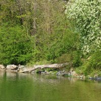 Весна на реке.... :: Galina Dzubina
