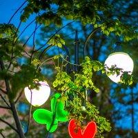 Ночные бабочки :: Игорь Герман