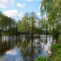 Весна :: Алексей Жуков