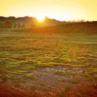Солнце светлое восходит... :: Nina Streapan