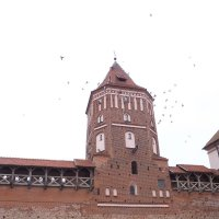Мирский замок :: алена s