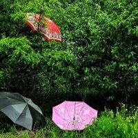 Отдыхающие зонтики :: Viktor Eremenko