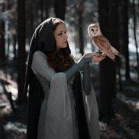Эльфийский лес :: Irina Voinkova