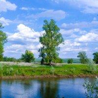 Весенний пейзаж на реке :: Сергей Тагиров