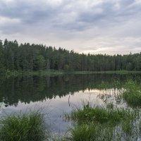 Вечернее озеро :: Владимир Филимонов