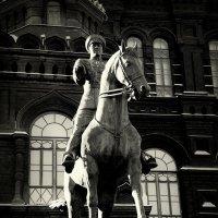 Памятник Георгию Константиновичу Жукову :: Арина Невская