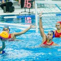 Россия - Испания , за секунду до победного мяча ! :: Андрей Куприянов