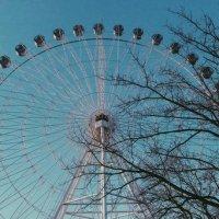 Ferris Wheel :: Dar Milekin