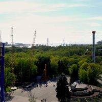 Приморский парк Победы.. :: tipchik