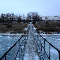 Зима :: Сандра Гро