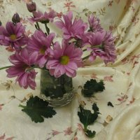 Розовые солнышки :: Valentina