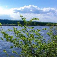 Майский день на реке :: Сергей Тагиров