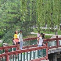 Пекин, Императорский парк 2 :: Сергей Смоляр