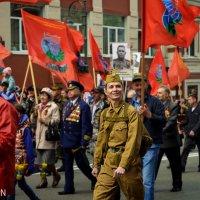 Бессмертный полк, возвращение из прошлого. :: Наталья Цыпцына