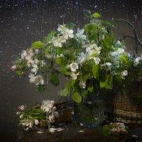Я знаю о том, что будет потом, после дождя... :: Оксана Евкодимова