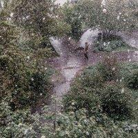 Неожиданный снегопад :: Марк