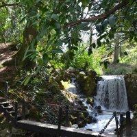 Речушка с водопадом и мостиком. :: zoja