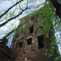 Руины :: sergey shishkov
