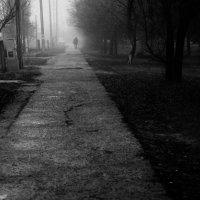Туманная одежка :: Мария Буданова