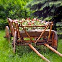 Телега полная цветов.... :: владимир