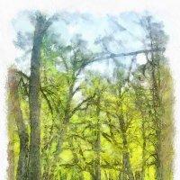 Весенний парк.. :: Tatiana Markova