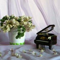 Пряный аромат цветков акации :: Наталья Джикидзе (Берёзина)