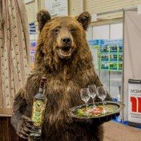 Бурый медведь :: Виктор Николаев